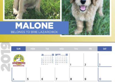 2019 Blue Dog Calendar_Page_09